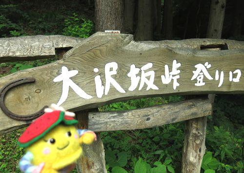 大沢坂峠賢治の森自然観察会🌱🐦🗻