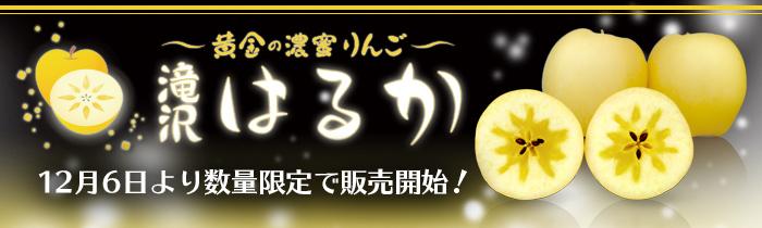 滝沢はるか 2017年12月6日より数量限定で販売開始!